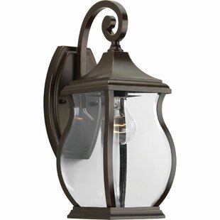 El Paso 1-Light Outdoor Wall Lantern