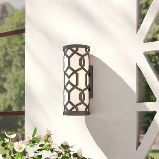 Willa Arlo Interiors Wheless 2-Light Outdoor Sconce