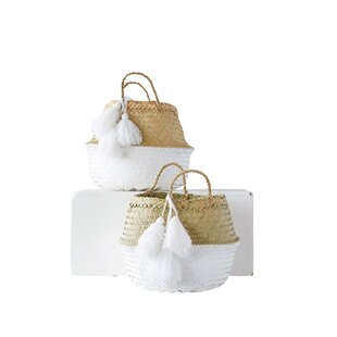 Best Price Painted Palm Leaf Collapsible 2 Piece Basket Set By Mistana