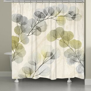 Latitude Run Canisteo X-Ray of Eucalyptus Leaves Shower Curtain