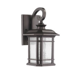 Latitude Run Fresno 1-Light Outdoor Wall Lantern