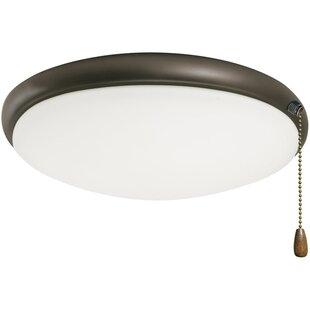 Pull string ceiling light wayfair bransford light fixture aloadofball Image collections