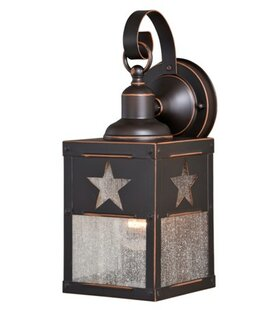 Loon Peak Frank 1-Light Outdoor Wall Lantern