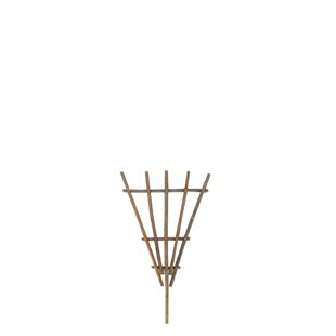 Birch Lane™ Natural Stacked Trellis (Set of 6)