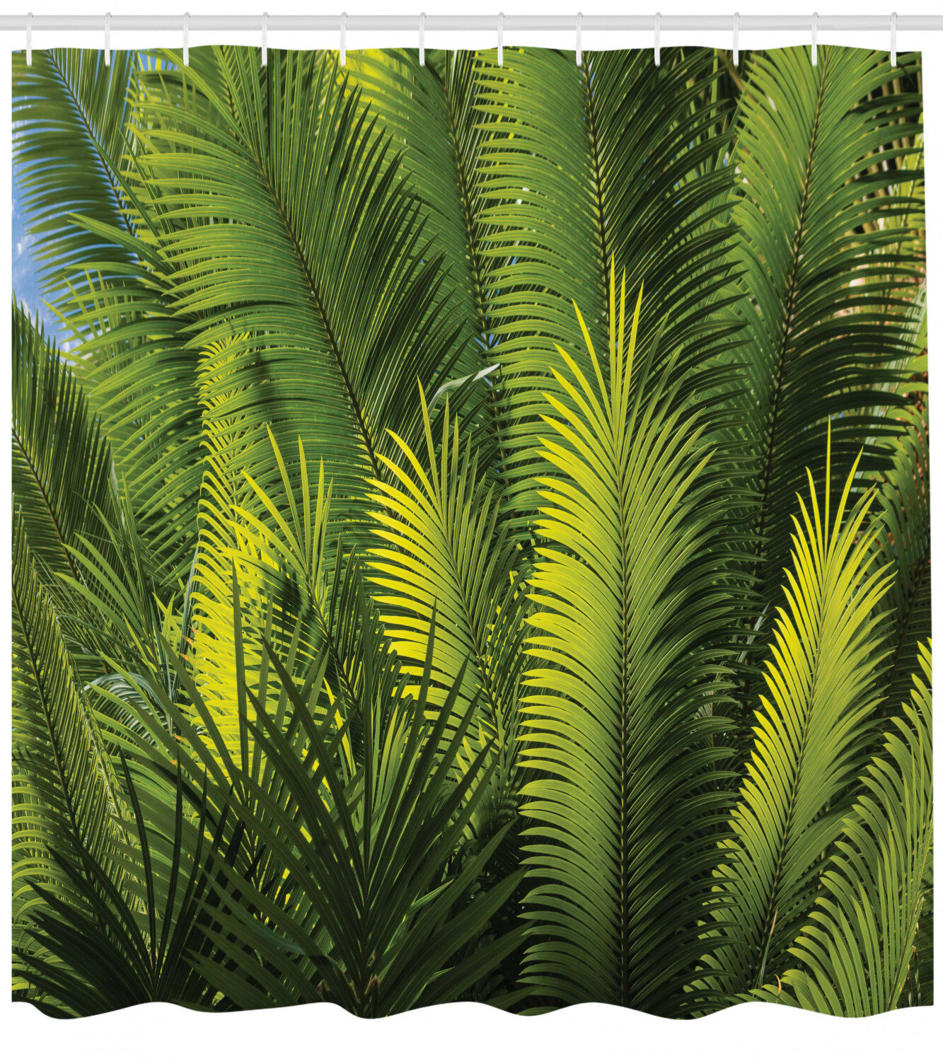 Ambesonne Palm Tree Foliage Tropical Plant Leaves Forest Exotic Natural Beauty Image Shower Curtain Set Reviews Wayfair