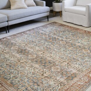 Blue Red Area Rugs You Ll Love In 2021 Wayfair