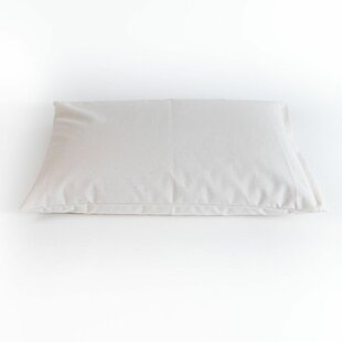 Rebecca Hull Support Buckwheat Pillow ByAlwyn Home