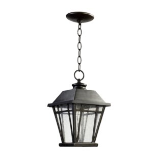 Earby 1-Light Outdoor Hanging lantern