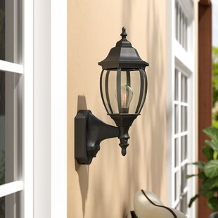 Corell Park Motion Detectors 1-Light Outdoor Wall lantern