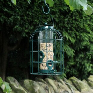 Eula Decorative Bird Feeder By Archie & Oscar