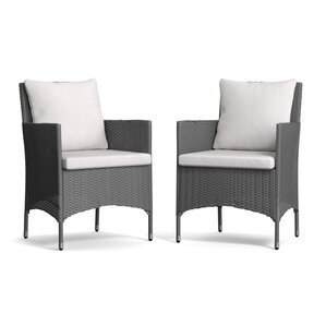 alana dining chair set of 2