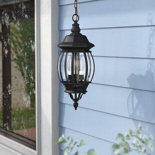 Alcott Hill Mackintosh 3-Light Outdoor Hanging Lantern