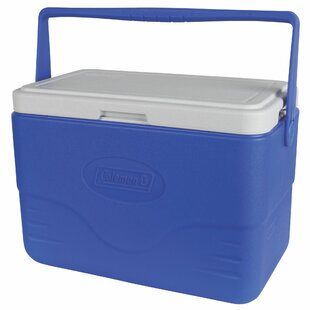 28 Qt. Bail Handle Cooler
