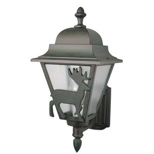 Alcott Hill Penfield 1-Light Outdoor Sconce