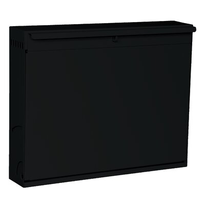 Hanging Wall Locker with Hasp Lock Datum Storage Color: Black