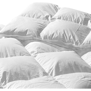 289 Thread Count Down Comforter