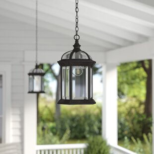 Laurel Foundry Modern Farmhouse Powell 1-Light Outdoor Hanging Lantern