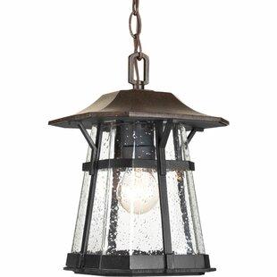 Alcott Hill Triplehorn 1-Light Casual Hanging Lantern