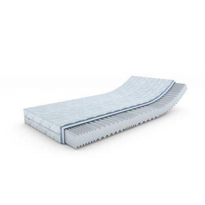 WayClassic 7-Zonen Kaltschaummatratze  14 cm Höhe  1 Schicht | Schlafzimmer > Matratzen > Kaltschaum-matratzen | Wayfair Sleep