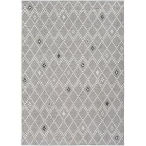 Corinna Medium Gray Area Rug