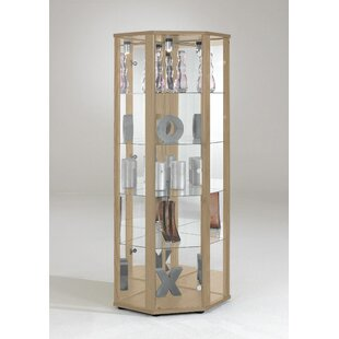 Rachel Corner Curio Cabinet With Lighting By Ebern Designs
