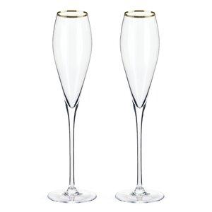 Belmontu2122 Rimmed Crystal Champagne Flute (Set of 2)