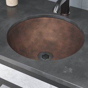 René By Elkay Single Bowl Metal Oval Vessel Bathroom Sink