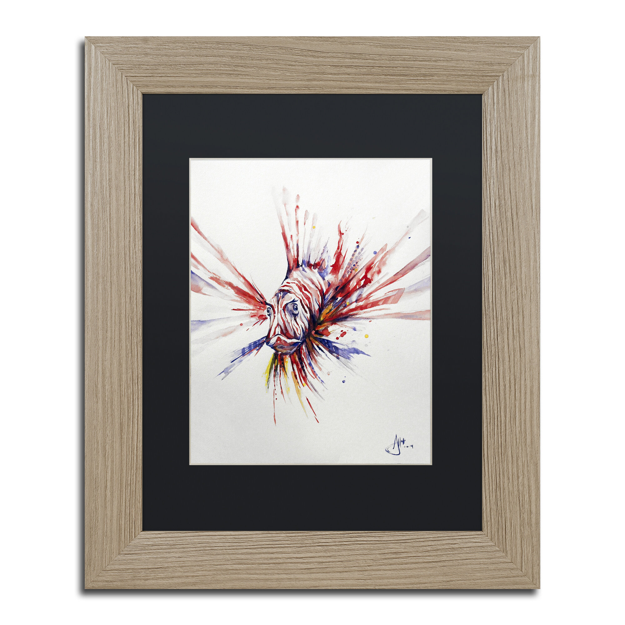 Trademark Art Pterois Matted Framed Painting Print On Canvas Wayfair
