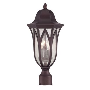 Besaw 3-Light Lantern Head by Fleur De Lis Living