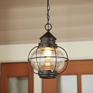 Shop For Hastings Outdoor Hanging Lantern By Birch Lane™