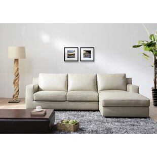 Sleeper Sectional by J&M Furniture