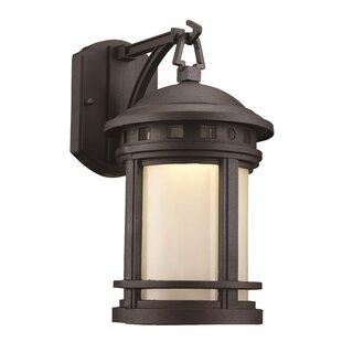 Loon Peak Ashberry 1-Light Outdoor Wall Lantern