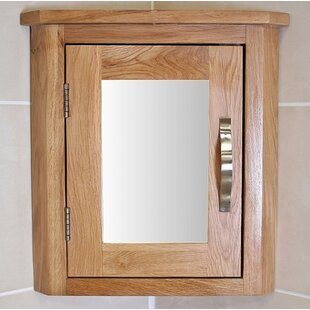 Kenzie 30cm X 45cm Surface Mount Corner Mirror Cabinet By August Grove