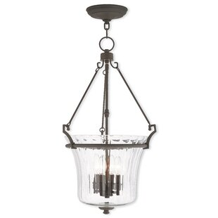 Bolindale 4-Light Urn Pendant by Darby Home Co