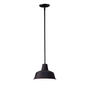 Castleberry 1-Light Outdoor Pendant