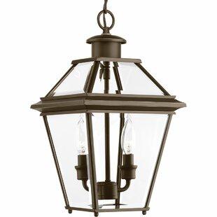 Darby Home Co Gunnora 2-Light Outdoor Hanging Lantern