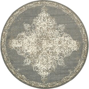Forcalquier Rectangle Gray Area Rug by Lark Manor