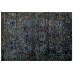 Compare prices One-of-a-Kind Vibrance Hand-Knotted Black Area Rug By Darya Rugs
