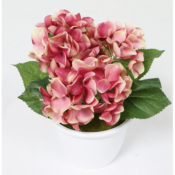 Charlton home artificial hydrangea flower floral arrangement in pot charlton home artificial hydrangea flower floral arrangement in pot wayfair mightylinksfo