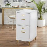 Dahle 2-Drawer File Cabinet by Mercer41