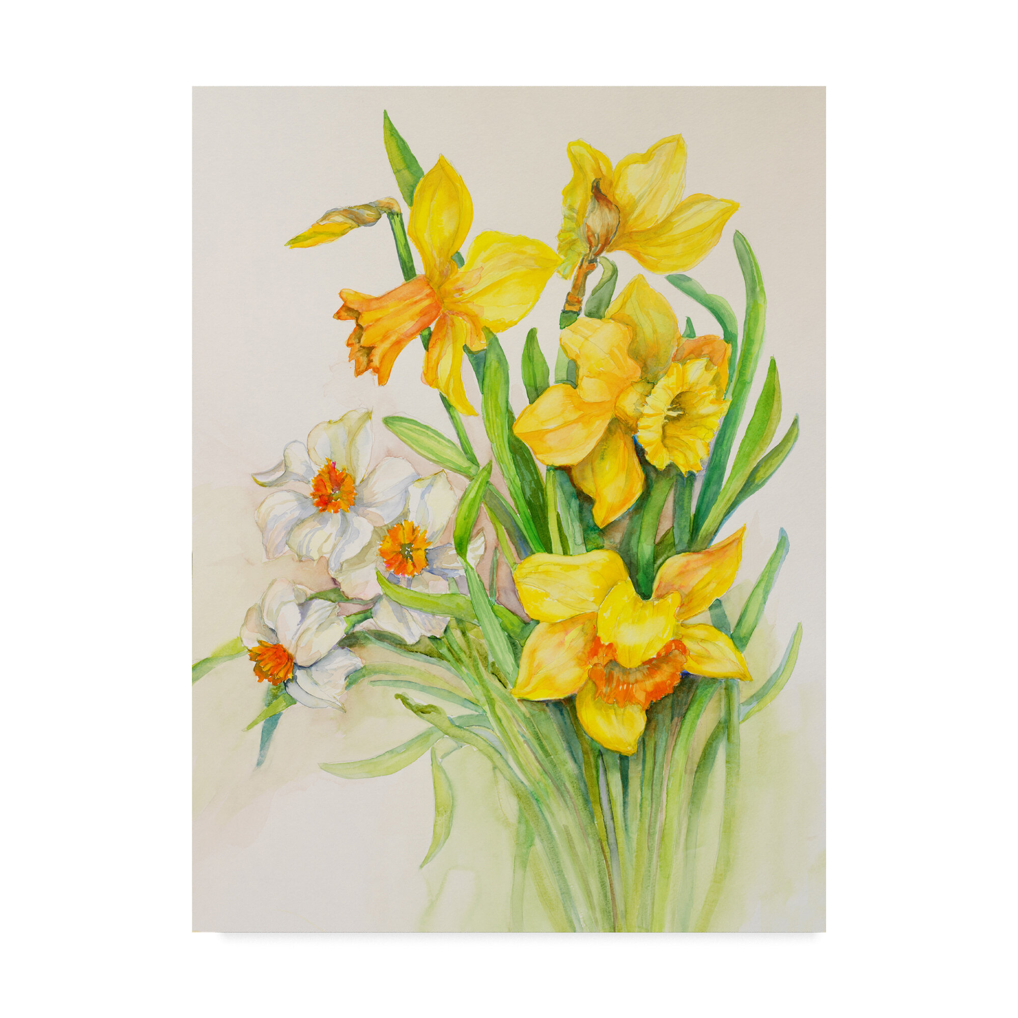 Trademark Art Daffodils Springs Calling Card Acrylic Painting Print On Wrapped Canvas Wayfair