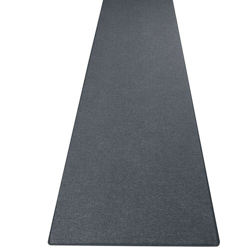 Dammann Tufted Anthracite Rug Ebern Designs Rug Size: Runner
