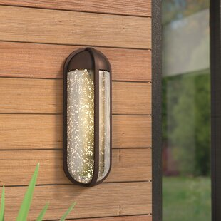 Luzerne 1-Light Outdoor Flush Mount by Brayden Studio