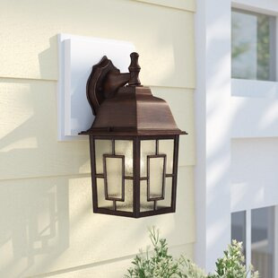 Sol 72 Outdoor Payeur 1-Light Outdoor Wall Lantern