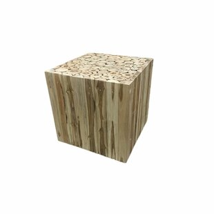 Union Rustic Leu intriguing Root Decoration End Table