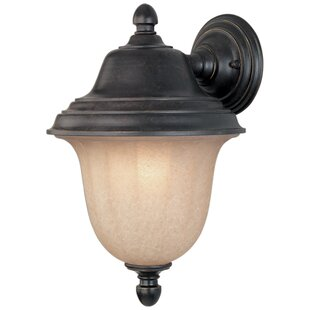 Teminot 1-Light Outdoor Sconce by Bloomsbury Market