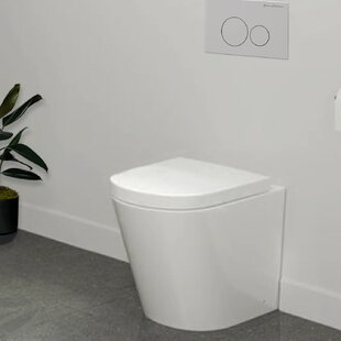 Sublime Dual Flush Elongated Back To Wall Toilet