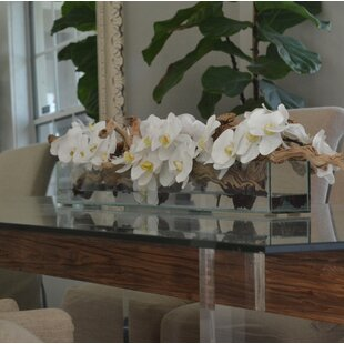 Phalaenopsis And Driftwood Orchids Centerpiece In Planter