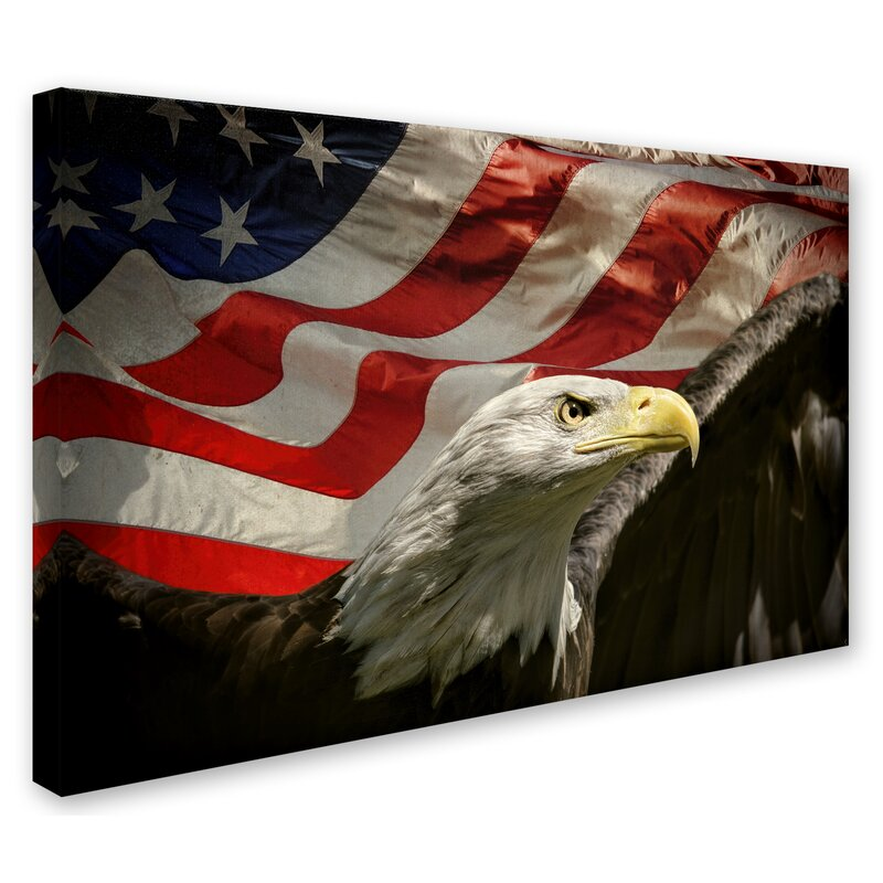 dc23f5de122e Trademark Art  American Eagle  Graphic Art Print on Wrapped Canvas ...