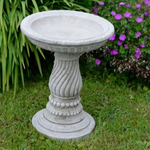Seffner Bird Bath By Sol 72 Outdoor